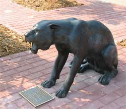 Picture of panther statue
